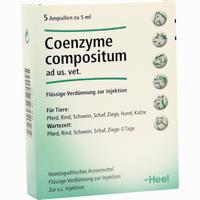 Abbildung von Coenzyme Comp Ad Us Vet Ampullen 5 x 5 ml