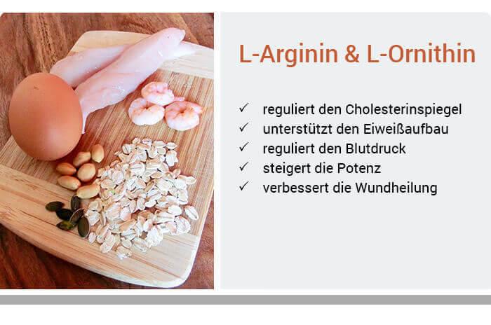 L-Arginin & L-Ornithin » Funktion & Wirkung der Aminosäuren